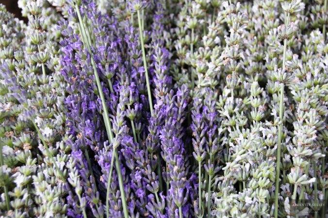 Linens in Lavender 6