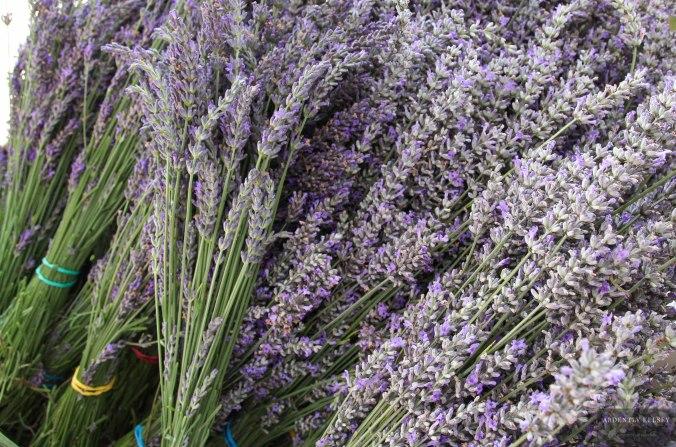 Linens in Lavender 14