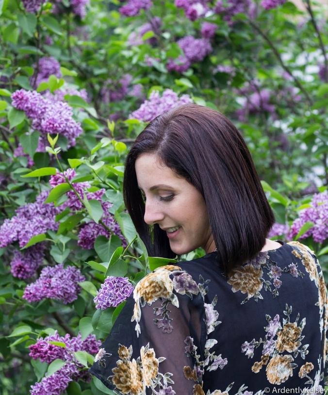 Lilacs-3